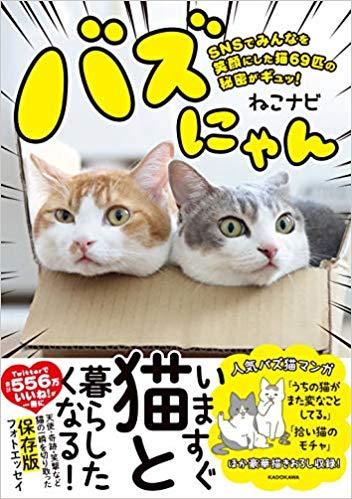フォトエッセイ『バズにゃん SNSでみんなを笑顔にした猫69匹の秘密がギュッ!』