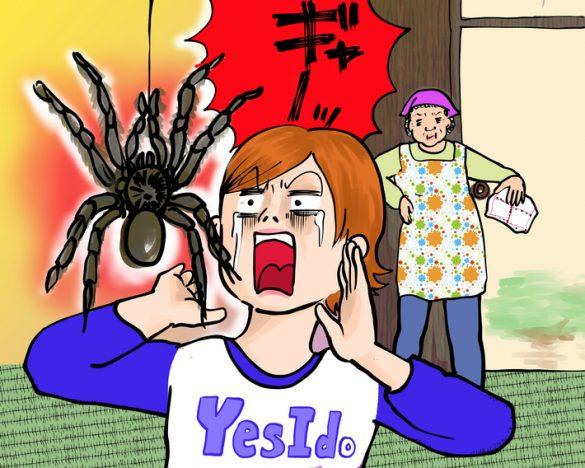 戦慄!巨大クモを握りつぶす民宿のオカン