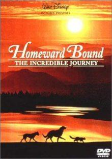 『奇跡の旅』