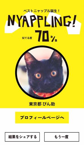ネコノラボ「NYAPPLING」保護猫 里親