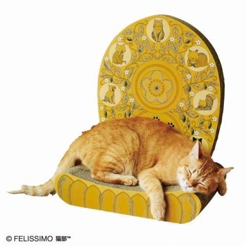 寝心地がよさそうなモデル猫・ししゃもくん