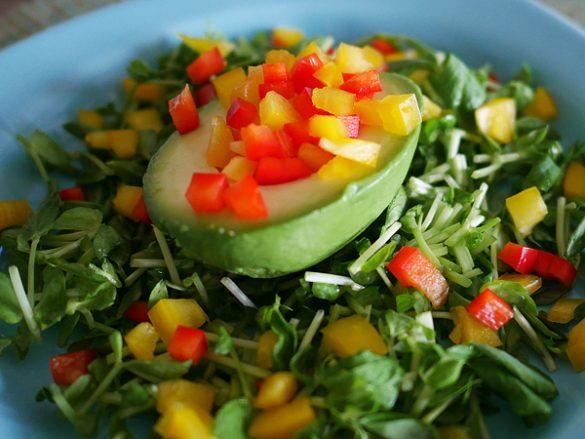 価格安定野菜「豆苗」の 賢い食べ合わせ術
