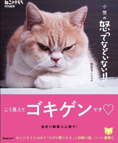 岡田モフリシャス著『小雪の怒ってなどいない! ! 』(2013年12月6日 ベネッセコーポレーション刊)