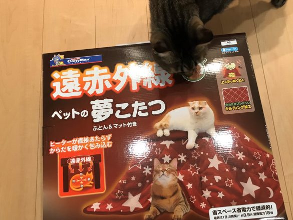 遠赤外線ペットの夢こたつ ペット 猫 犬