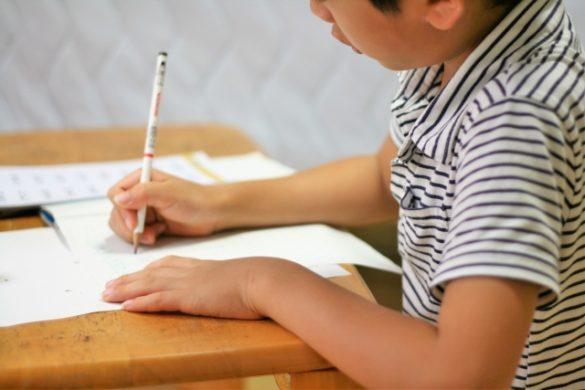 小学生、子供、男子、勉強、ノート