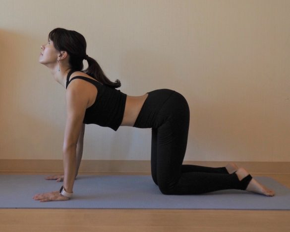 (1)姿勢が整い内臓の働きUP 1