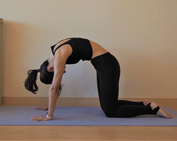 (1)姿勢が整い内臓の働きUP 2