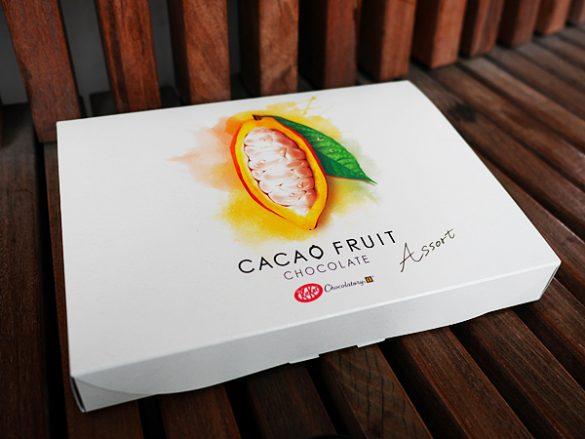「キットカット ショコラトリー カカオフルーツチョコレート」