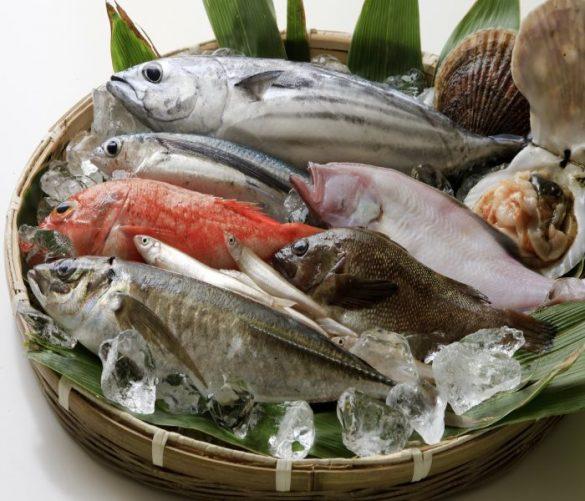 魚屋、鮮魚