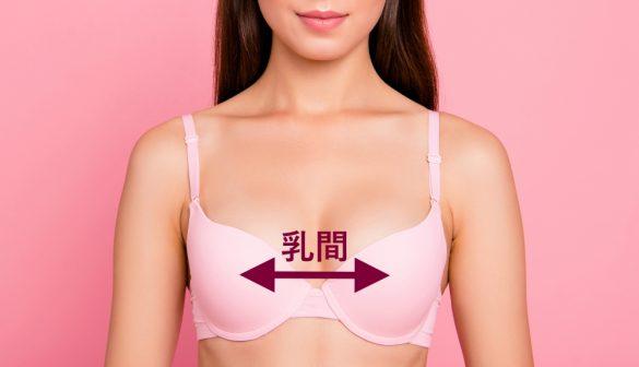 乳間の距離