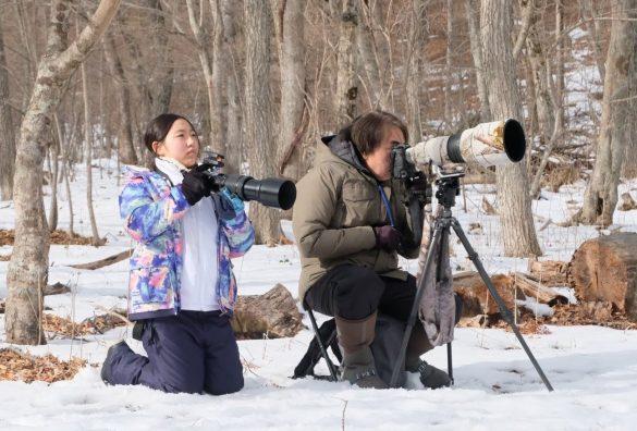 藍沙さんが撮った「雪の妖精」ことシマエナガちゃん