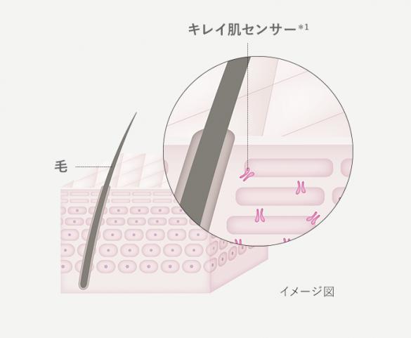 キレイ肌センサー イメージ図