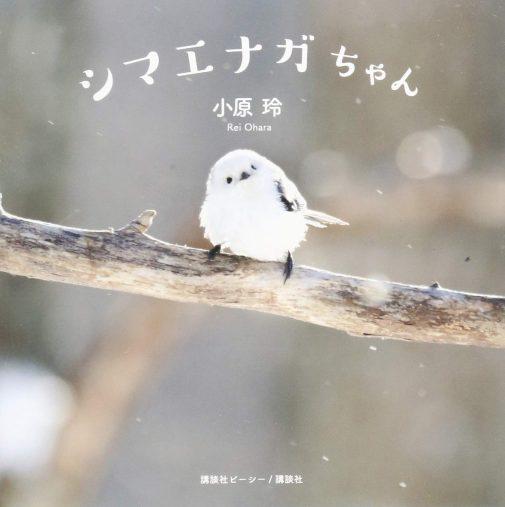 小原玲『シマエナガちゃん』(講談社、2016年)