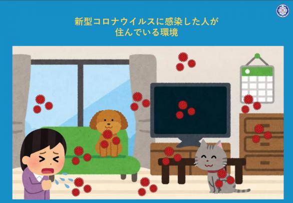 公益社団法人東京都獣医師会「新型コロナウイルスに感染した人が飼っているペットを預かるために知っておきたいこと」Ver.2