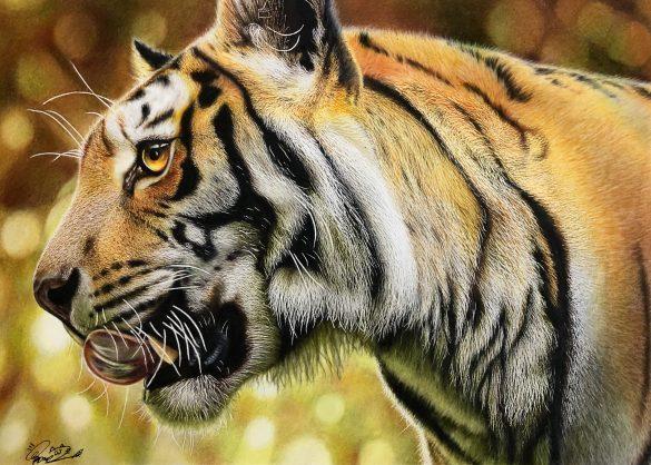 ①ワイルド×かわいいが混在する「トラの絵」