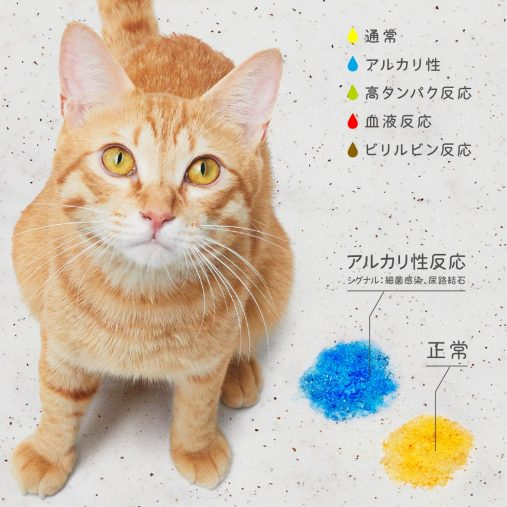 手軽に尿検査ができる猫砂「しぐにゃる」