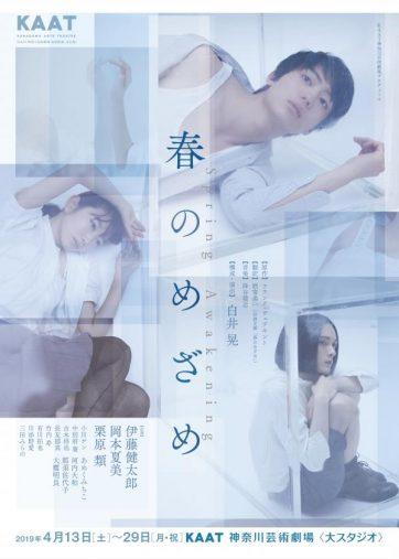 伊藤健太郎「春のめざめ」KAAT神奈川芸術劇場プロデュース