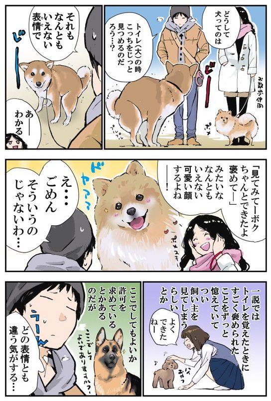 (画像:石原 雄さんTwitter@K5dbZRmjNe77i5r より)