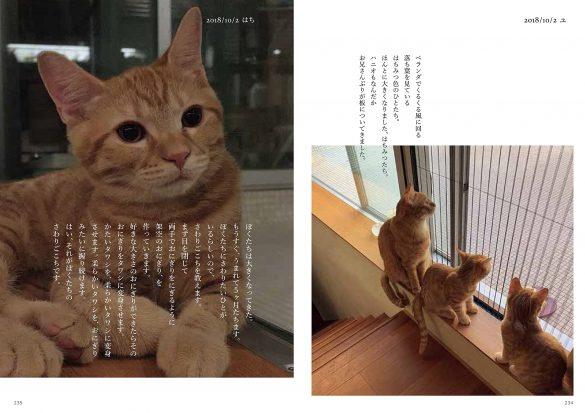 ハニオ日記 II 2018-2019 より