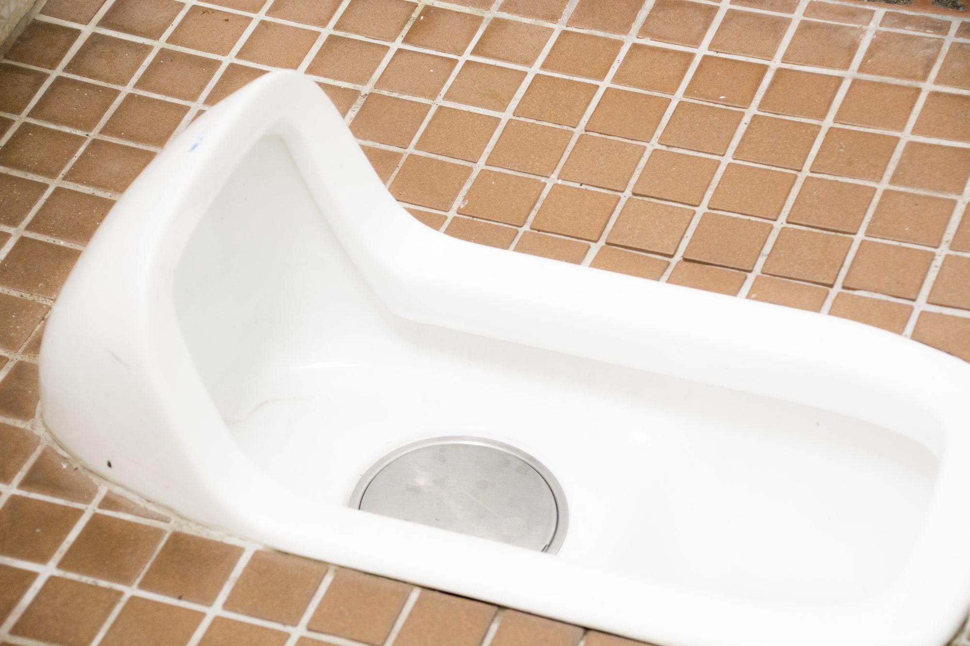和式トイレで立ち上がれなくなり大ピンチ